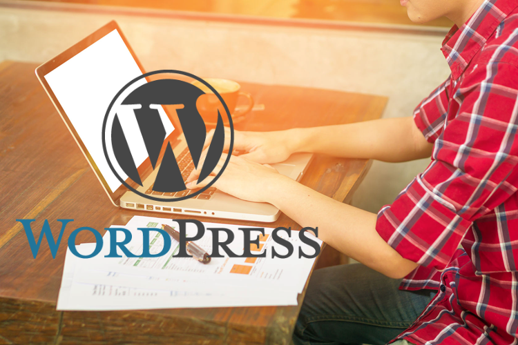 Wordpress Website Developers integrate SEO for superior results
